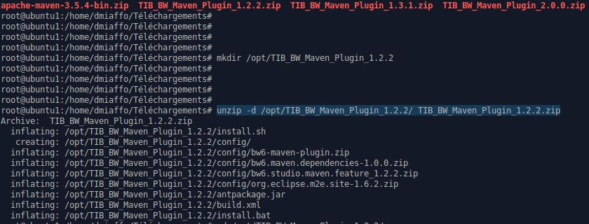 TIBCO BW 6 Maven plugin unzip [miaffo.net]