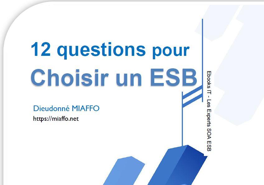 miaffo.net - 12 questions à se poser pour choisir un ESB