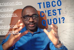 Description des composants TIBCO