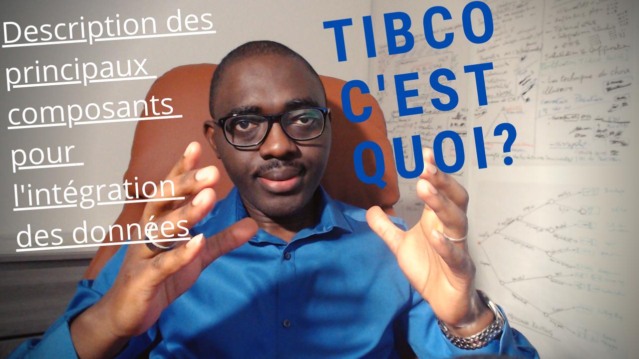 Description des composants TIBCO
